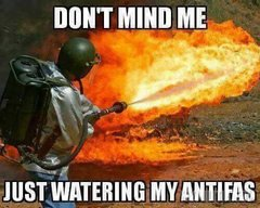 Watering My Antifas